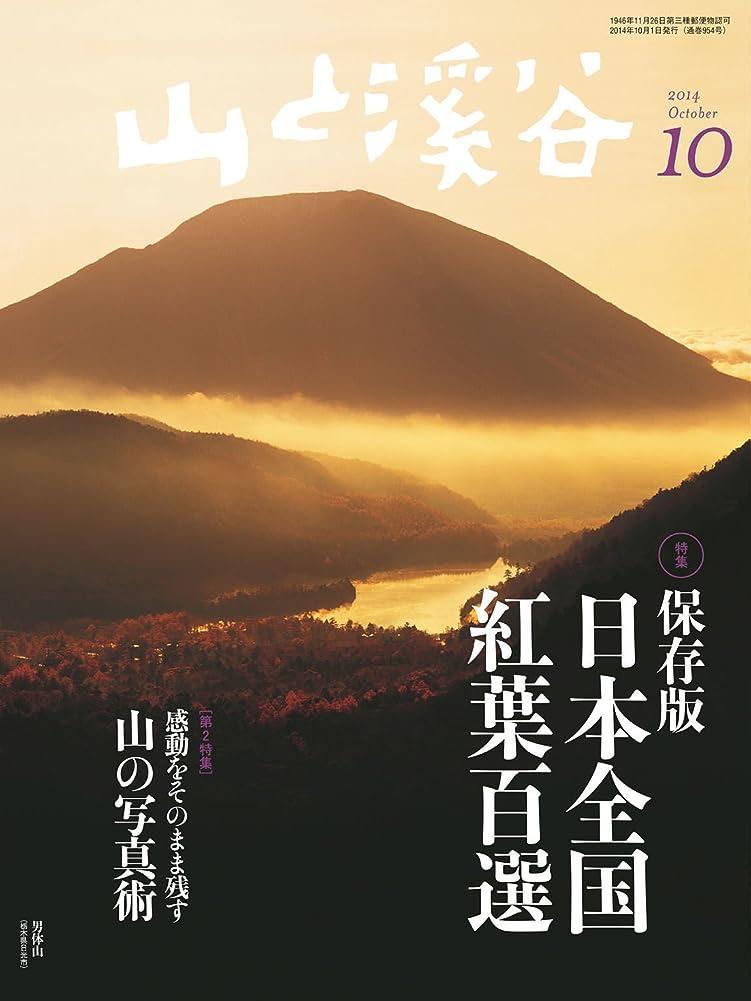 バレーボール反逆者速報山と溪谷 2014年 10月号 [雑誌]