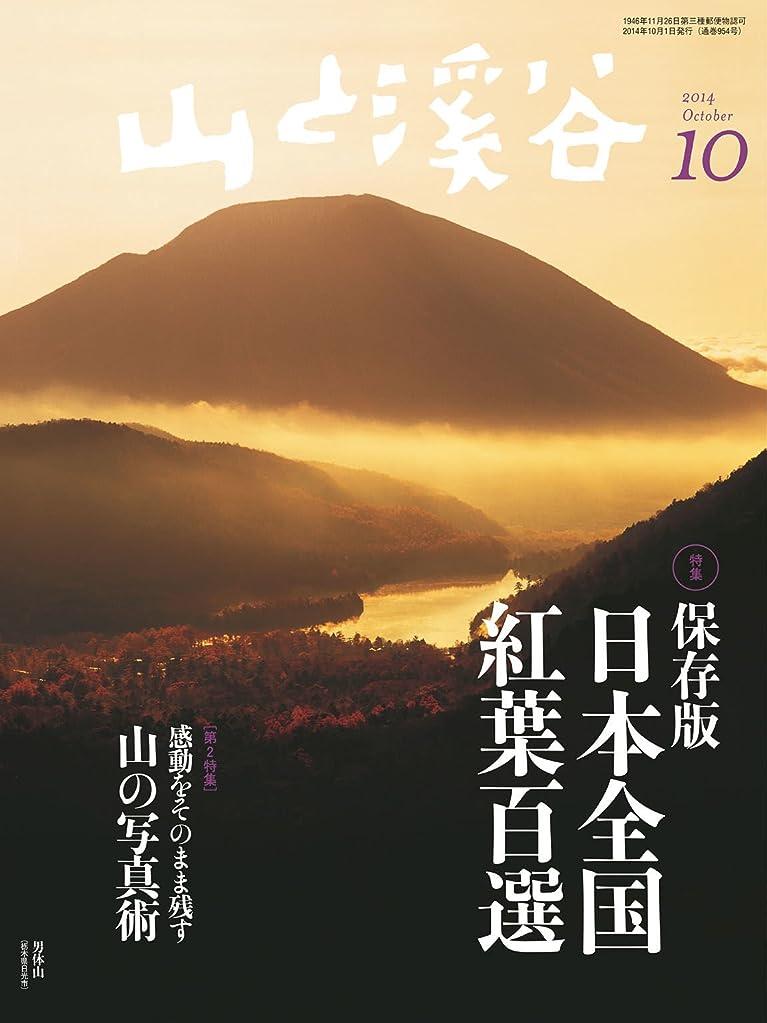 疲れた露骨な自発山と溪谷 2014年 10月号 [雑誌]