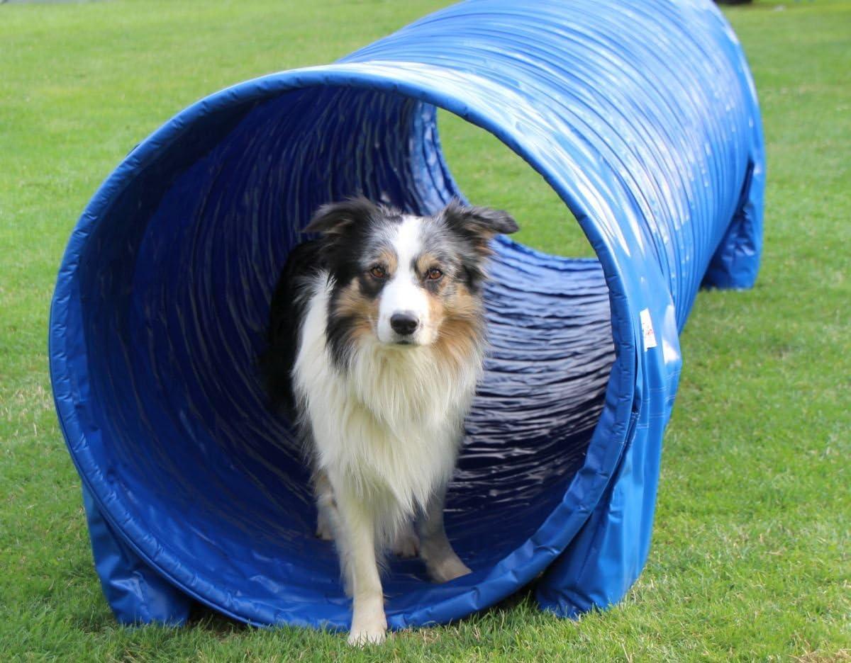 Callieway/® Dog Agility Tunnel Profi Hunde Tunnel Agility Ger/ät St/ützsands/äcke bereits inklusive