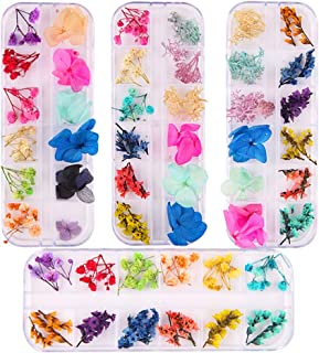 Solustre 4 Boxes Dried Flowers for Nails Art Natural Dry Flower DIY Nail Design 3D Nail Art Sticker for Nail Art Decoration