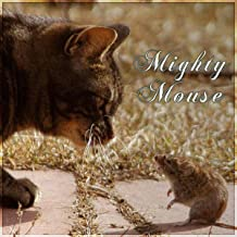 Mighty Mouse - Soothing Music for Cats, Relaxing Melodies to Calm Down Your Pet