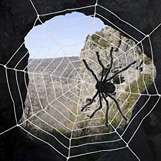 AmyHomie Giant Spider,Halloween Spiders Web,Best Halloween Decorations,Christmas Decor (2, 1spider+1web)