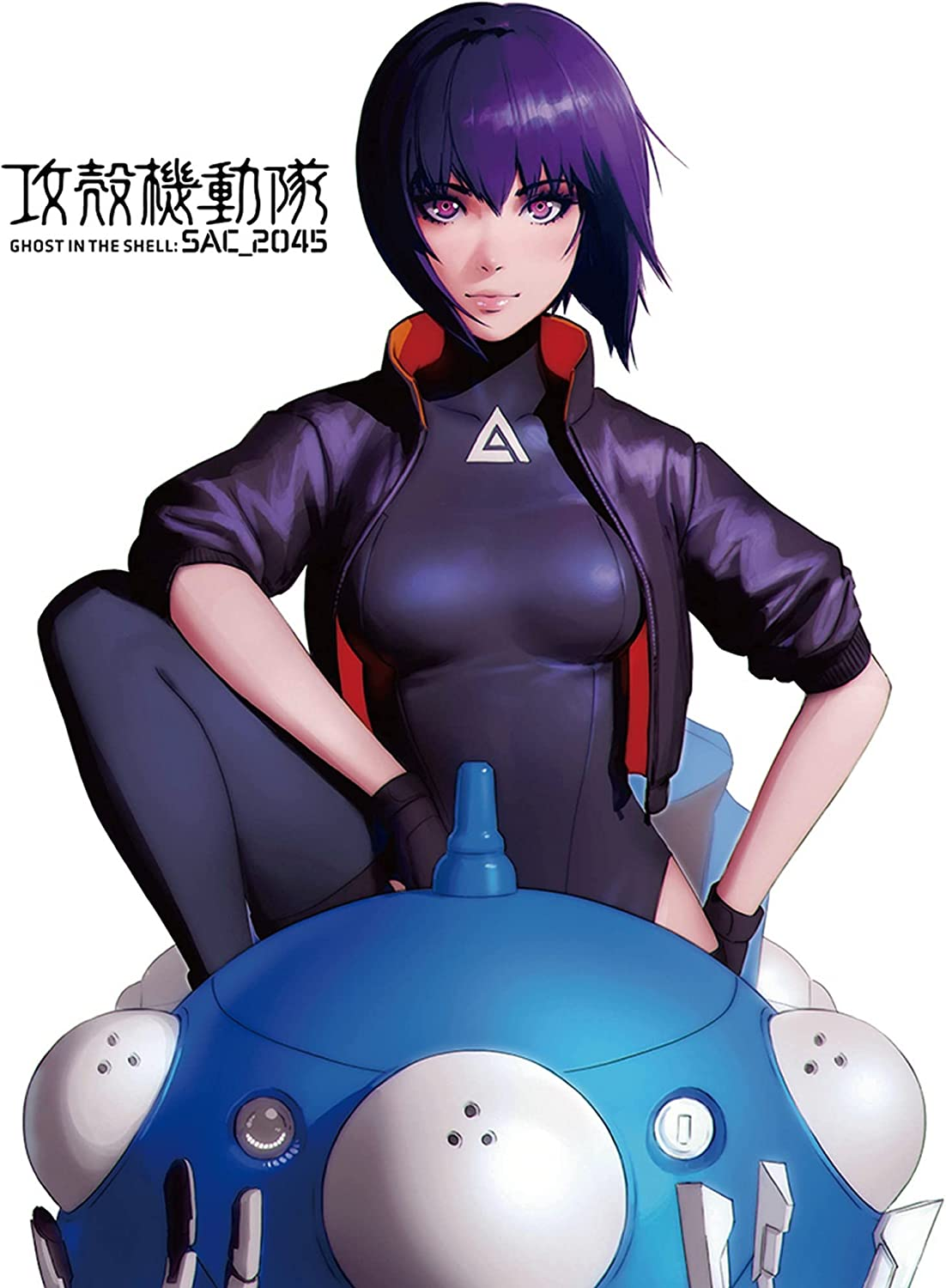 OFFicial Recommended mail order Ghost in The Shell Sac 2045- Art Throw Blanket Sublimation Key