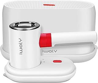 iwoly スチームアイロン 衣類スチーマー 2WAY ハンディ アイロン 高温 蒸気 シワ取り 収納ケース付き