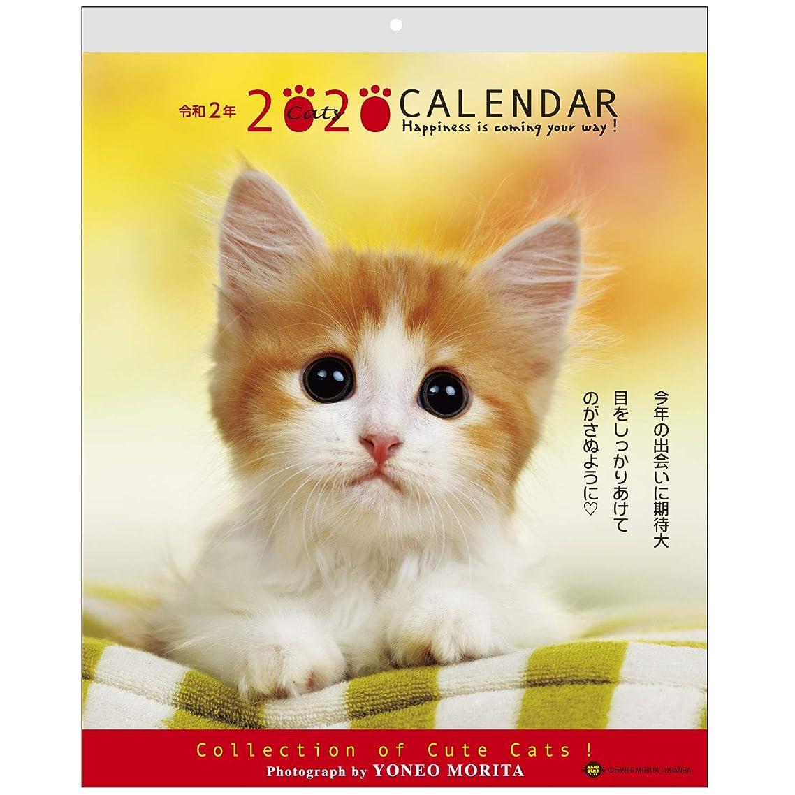 結紮最初は浴アクティブコーポレーション 2020年 カレンダー 猫 壁掛け 森田米雄 メッセージカレンダーCAT ACL-10