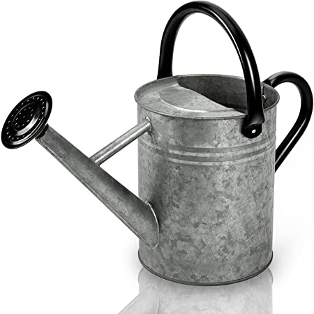 Metal Watering Can 1 Gallon for Outdoors Gardening, Galvanized Steel Watering Pot with Removable Spray Spout, Movable Upper Handle, Vintage Zinc