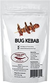Edible Insects Bug Kebab