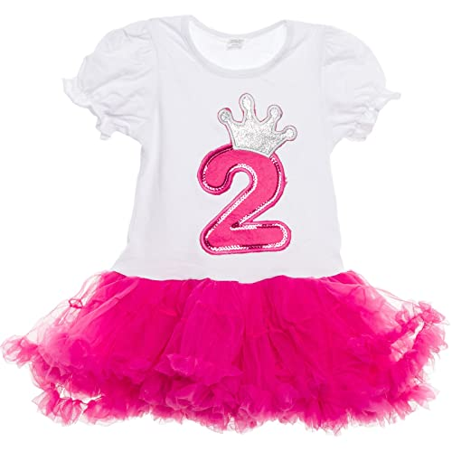 Silver Lilly Baby Girls Birthday Outfit