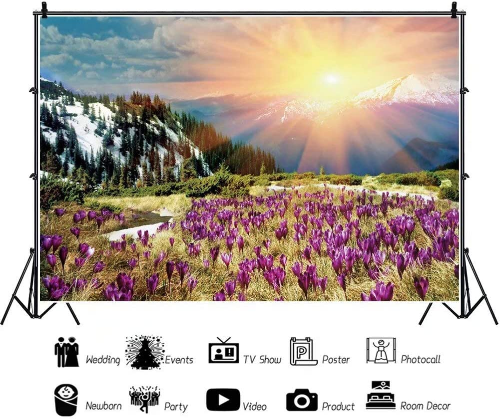 DaShan 14x10ft Blossom Flowers Wedding Backdrop Mountains Landscape Outdoor Happy Birthday Photography Background Sunshine Travel Holiday Adventure Kid Children Baby Portraits Photo Props