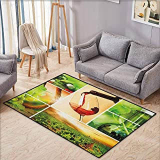 Pet Rug,Wine,Wine Tasting and Grapevine Collage Green Fresh Field Pouring Drink Delicious,Extra Large Rug,3'11