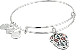 Alex and Ani Color Infusion Calavera Bangle