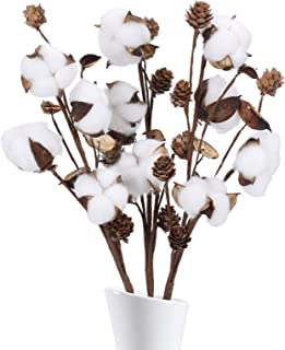 HUAESIN 3pcs Ramo de Flores Secas Naturales Blancas Rama Algodon Artificial Decoracion Flores de Algodon Natural para Jarr...