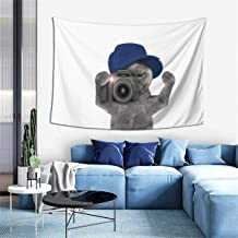 Hazhisha Funny Photographer Cat Wall Hanging Tapestry Art Home Decorations for Living Room Bedroom Dorm Decor in 40 X60 Inches