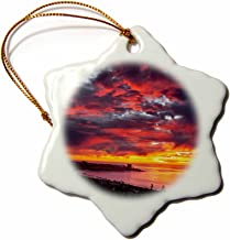 "3dRose Porcelain Ornament, ORN_250626_1, 3"""