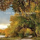 New Mexico Treasures:  2019 Engagement Calendar: 2019 Engagement Calendar