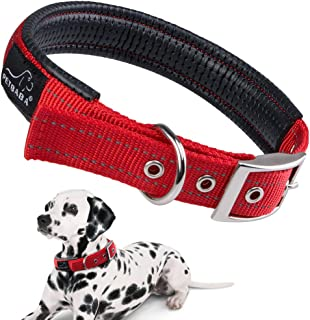 PETBABAB Padded Dog Collar with Buckle, Soft to Protect Neck, Durable to Last Long in Walking Training Pet