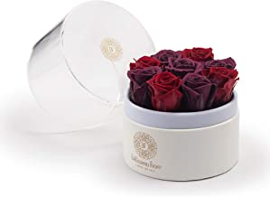 Bellissima Fiore Burgundy - Purple Preserved Real Rose   Acrylic Display Box   Sophisticated Gift   Home Office Decor, Birthday, Valentine's Day, Mother's Day, Wedding   Forever Rose   Handmade