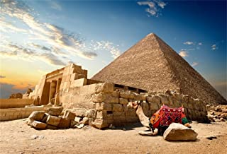 AOFOTO 8x6ft Egyptian Pyramid Backdrop Giza Desert Camel Ancient Egypt Culture History Sphinx Pharaoh Stone Tomb Photography Background Adult Man Boy Portrait Travel Photo Shoot Studio Props Vinyl