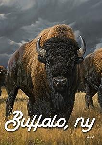 Toland Home Garden Where The Buffalo Roam Buffalo NY 28 x 40 Inch Decorative Bison Animal Regional House Flag