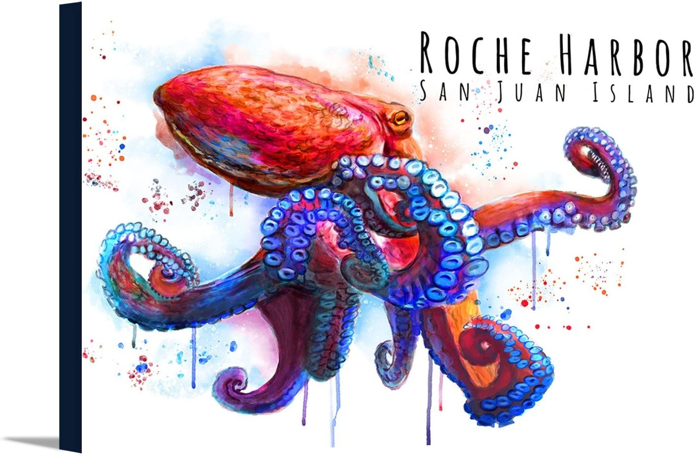Roche New item Harbor Washington Octopus Gallery 18x12 25% OFF Watercolor Wra
