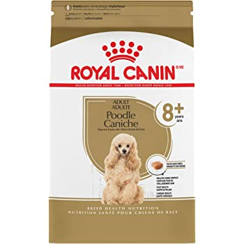 Royal Canin Breed Health Nutrition Poodle 8+ Adult Dry Dog Food
