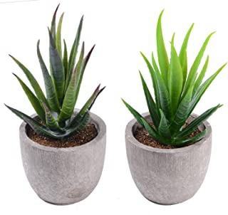 GreenEur Plantas de artificiales suculentas -