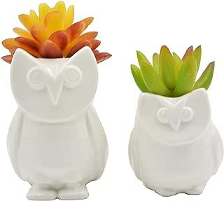 2 PCS Set Cute Cartoon Animal Owl Shaped Ceramic Succulent Cactus Flower Pot/Plant Pots/Planter/Container for Home Garden Office Desktop Decoration (Plants Not Included)