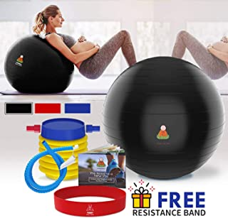 Lazy Monk Exercise Ball, Fitness Workout & Chair | Balance Pilates Yoga Large Gym Ball w/Pump, Extra Pin | Excersize Birthing & Pregnancy Ball Anti-Burst Set | Elastic Loop & Hard Cover Workout Guide