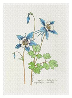 Giclee Print Trillium from the Wildflowers Group 7 X 9.5 Inches ARThouse Botanical Print