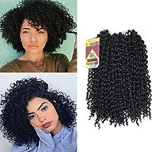 YXCHERISHAIR 10inch 3PCS/LOT,Synthetic Jerry Curl Weave Deep Wave Mambo Twist Crochet Braids with Kanekalon Fiber Heat Resistant Freetress Ombre Braiding Hair Extensions(10 inch 1 Pack, 2)