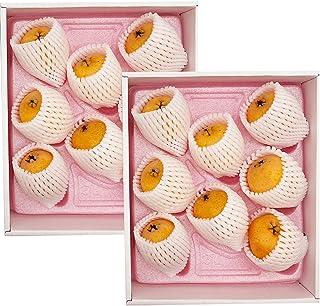 福岡県産 びわ 高倉びわ 1kg (約500g×2箱) 化粧箱入 母の日 ギフト ビワ