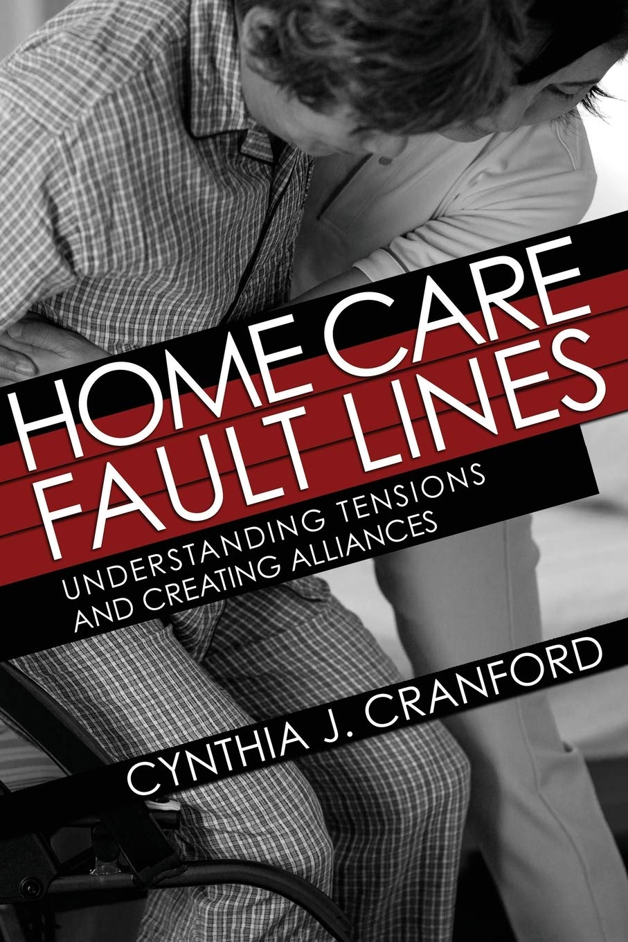 Image OfHome Care Fault Lines: Understanding Tensions And Creating Alliances (The Culture And Politics Of Health Care Work)