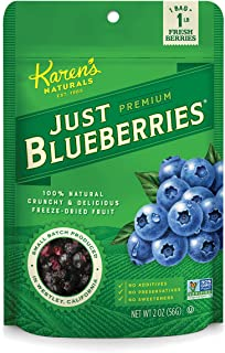 Karen's Naturals Just Tomatoes, Just Blueberries 2 Ounce Pouch (Pack of 4) (Packaging May Vary)