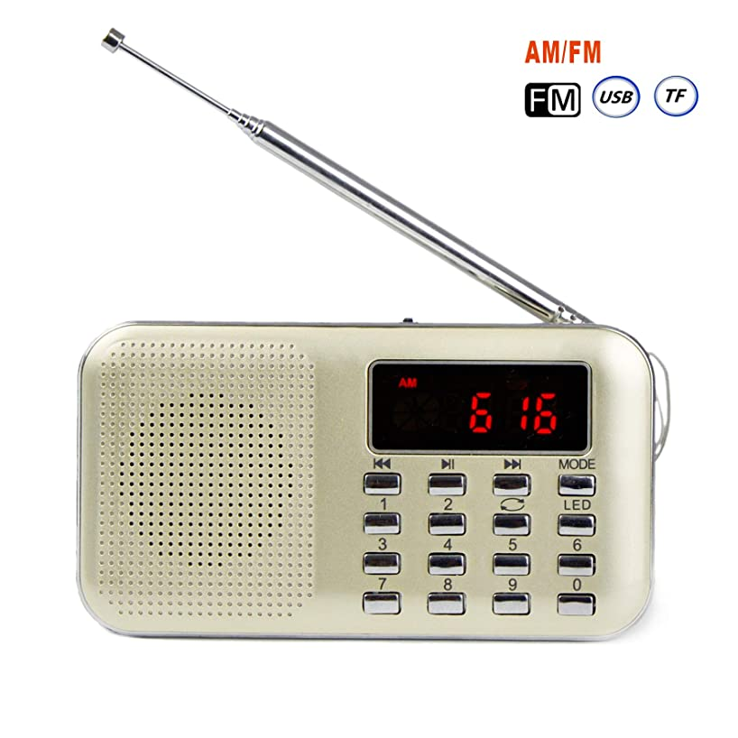 GES NET Mini Digital AM FM LCD Radio Speaker, Micro SD/TF USB Disk Speaker MP3 Music Player Stereo, Portable Pocket Novelty Radio Receiver, Handheld Radio (Gold)