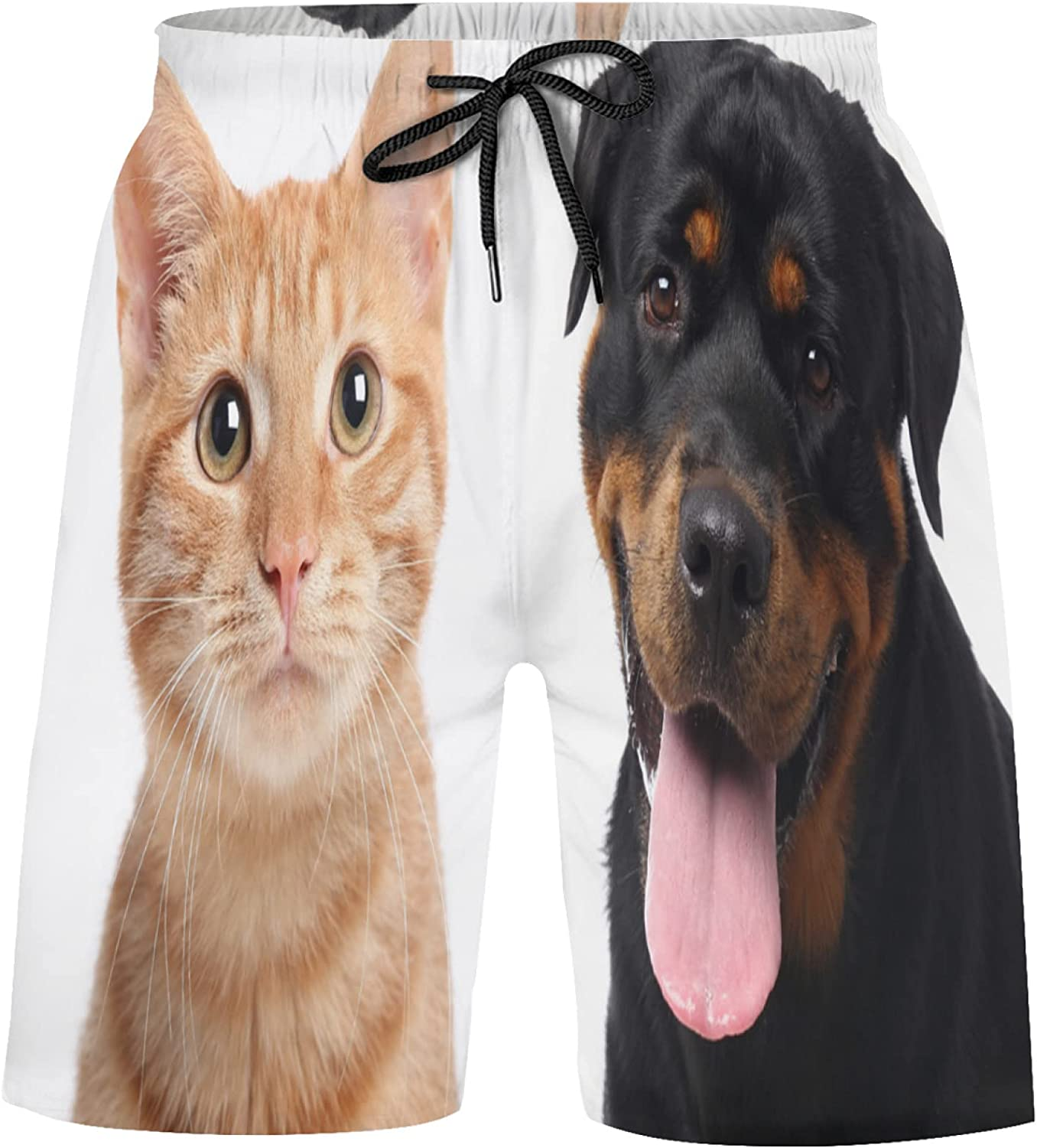 Super sale Beautiful Lovely Dog and Cat Shorts Suits Super Special SALE held Athletic Pets Bathing
