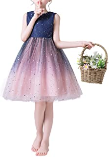 Weileenice® 子供服 フォーマルドレス 女の子 ミニドレス 刺繍 フラワー 100/110/120/130/140/150/160 プリンセス 膝丈 結婚式 発表会 誕生日