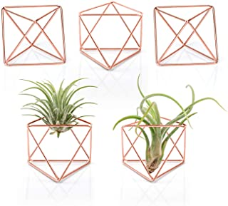"""Mkono 5 Packs Air Plant Holder Mini Metal Tabletop Himmeli Decor Modern Geometric Planter Tillandsia Display Stand with Each Side 2.6"""" Long for Home, Office and Wedding Gift Idea, Rose Gold"""