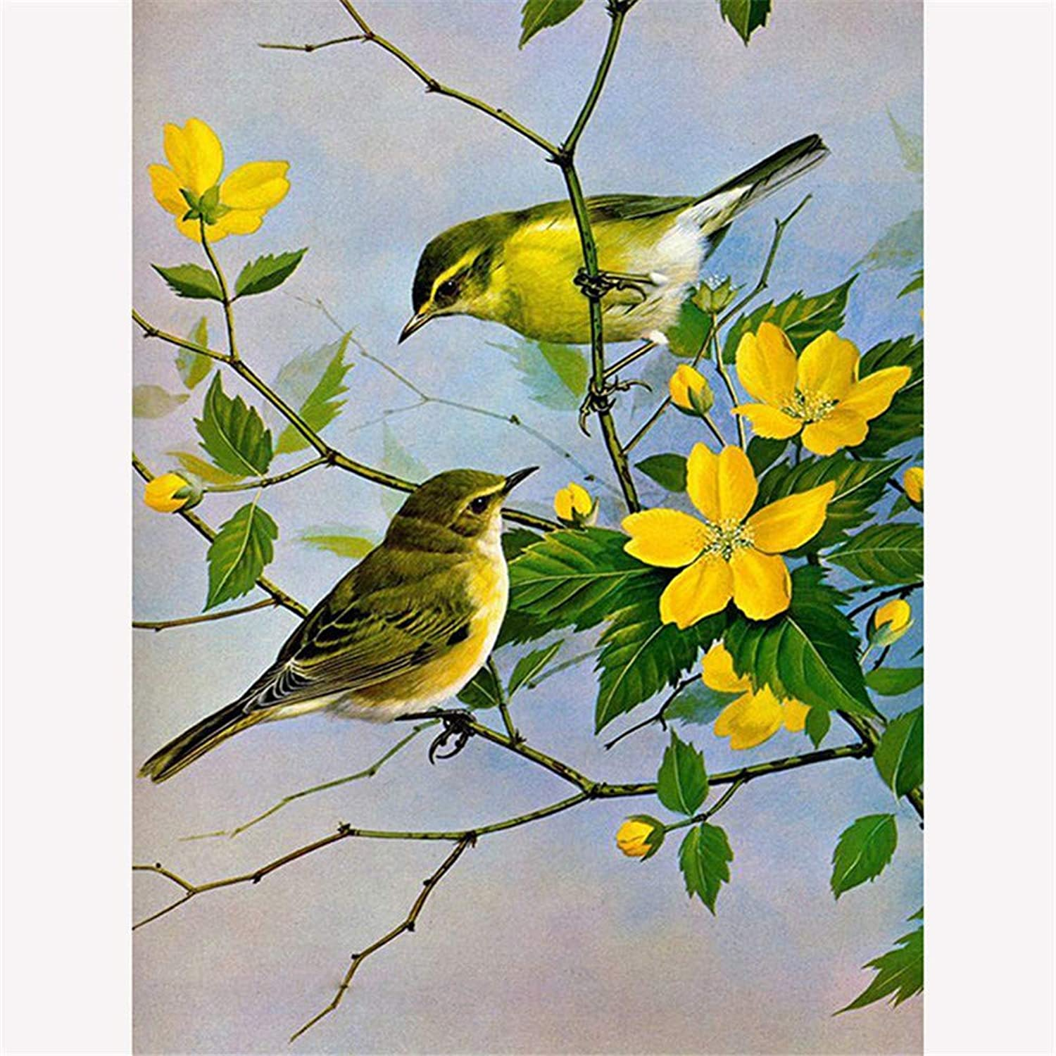 DIY Oil Painting Paint by Number Kit for Adult Kids - Painted Flower Bird,16X20 Inch