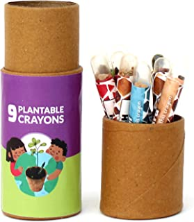 Plantable Colouring Seed Crayons - Pack of 9 Seed Crayons in Round Kraft Tube | Eco-friendly Stationery | Save The Planet