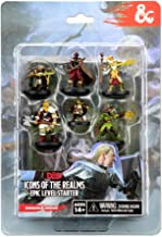 WizKids D&D Icons of The Realms Miniatures Epic Level Starter Game