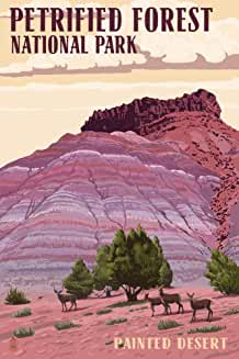 Check Out Petrified Forest National Park ArizonaProducts On Amazon!