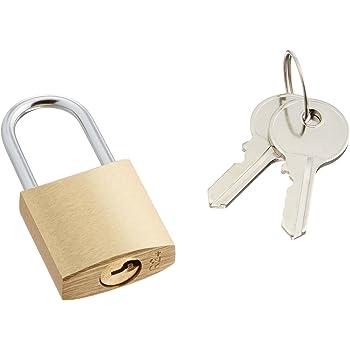 エレコム セキュリティロック 南京錠 幅25×奥行11×高さ51mm 真鍮 鍵2本付 ESL-NK