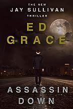 Assassin Down: Non-Stop Assassin Thriller (Jay Sullivan Thrillers Book 1) (English Edition)