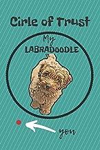 Best the labradoodle trust Reviews