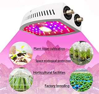 LED Grow Light Full Spectrum Double Adjustable Knobs COB Plant Lights for Greenhouse Hydroponic Indoor Plants Veg and Flow...