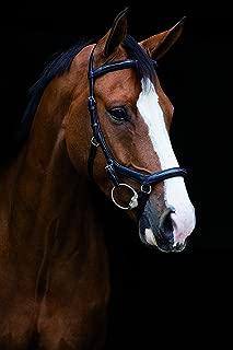 Horseware Rambo Micklem Diamante English Leather USA, Black - Pony
