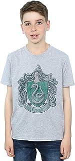 HARRY POTTER niños Slytherin Distressed Crest Camiseta 7-8 Years Gris Sport