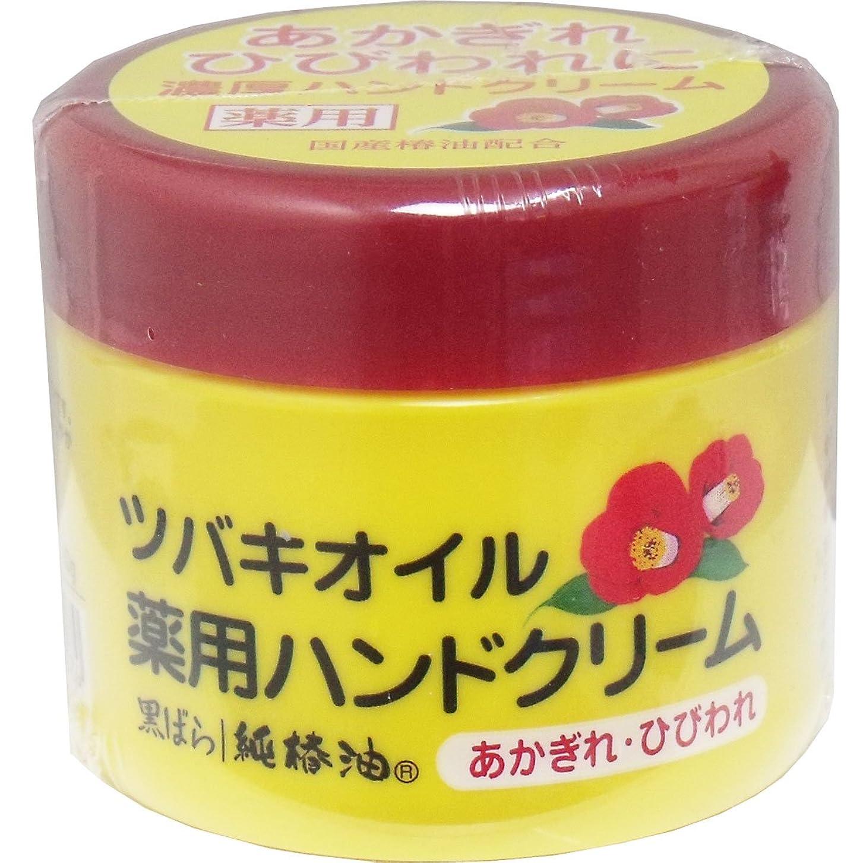 スーパーマーケット表現受益者【セット品】ツバキオイル 薬用ハンドクリーム (医薬部外品) 80g ×3個