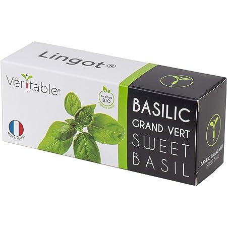 Véritable Lingot® Basilico Verde Grande BIO - Compatibile con Orti Interni Exky® - Ricarica pronta all'Uso - Substrato con Semi Integrati