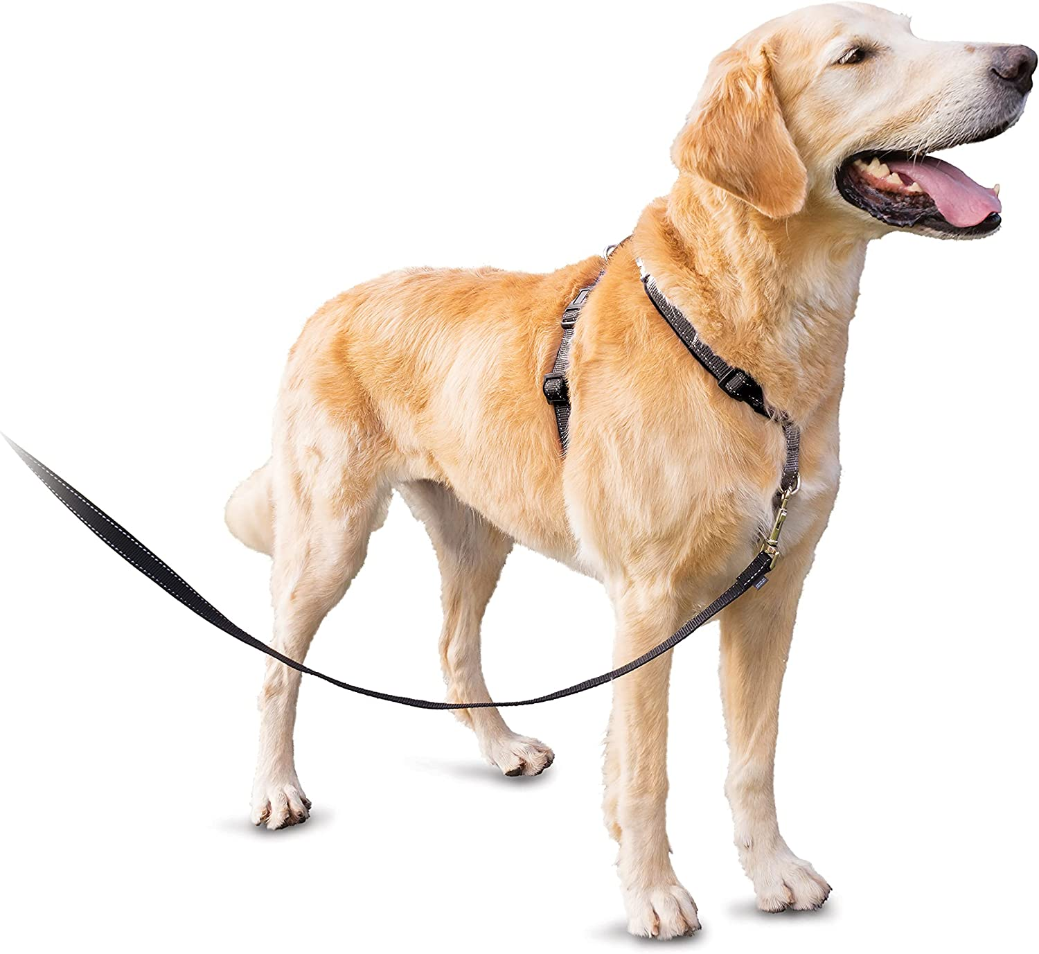 PetSafe 3 Max 46% OFF in 1 Dog Harness online shop – Dogs for †Solution No Pull
